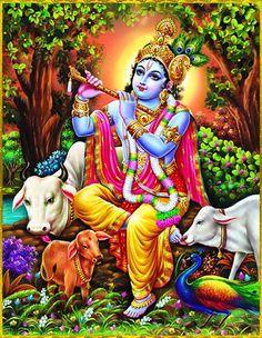 Lord Krishna Bhagwan Photos