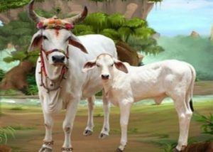 98+ Gau Mata Image Beautiful Hindu Holy Cow Gaay Mata Photos